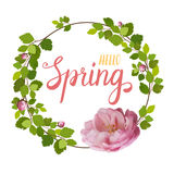 Beautiful greeting card with a wreath of spring pink roses and lettering on white background. Vector illustration Royalty Free Stock Images