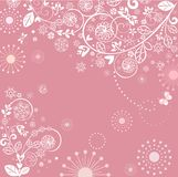 Beautiful greeting pink lacy card Royalty Free Stock Photos
