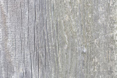 Beautiful grey and white wooden texture or background Stock Photo