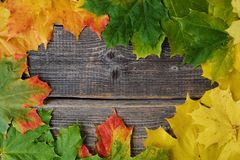 Beautiful grey wooden background with autumn leaves Royalty Free Stock Photo
