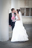 Beautiful groom and bride Royalty Free Stock Images