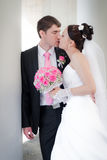 Beautiful groom and bride Stock Images