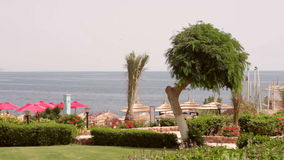Beautiful grounds of the hotel with sea view.  stock video footage