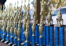 Beautiful group of trophies. Series of blue and gold trophies in perspective stock image