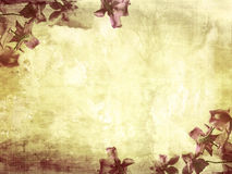 Beautiful grunge background with magnolia vector illustration