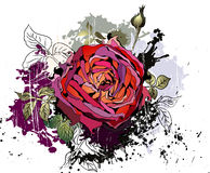 Beautiful grunge background with rose Royalty Free Stock Photo