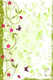 Beautiful Grunge Floral Background Royalty Free Stock Photo