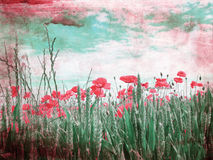 Beautiful grungy background with poppies Royalty Free Stock Images