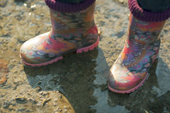 Beautiful gumboots in a puddle Stock Images
