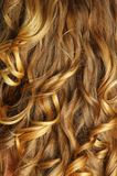 Beautiful hair Royalty Free Stock Photography