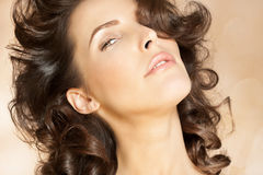 Beautiful Hair. Closeup of a beautiful woman with nice hairstyle Royalty Free Stock Photo
