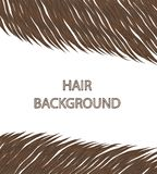 Beautiful hair every woman's dream Royalty Free Stock Photos