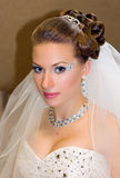 Beautiful hairdress for the bride Stock Image