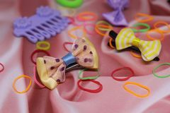 Beautiful hairpins, rubber bands for Yorkshire terriers stock photography