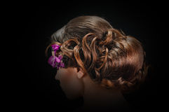 Beautiful hairstyle Stock Photos
