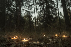 Beautiful halloween composition with runes and candles on the grass in dark autumn forest. Ritual Royalty Free Stock Image
