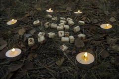Beautiful halloween composition with runes, skull, tarot  and candles on the grass in dark autumn forest. Ritual Royalty Free Stock Image