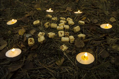 Beautiful halloween composition with runes, skull, tarot  and candles on the grass in dark autumn forest. Ritual Stock Photo