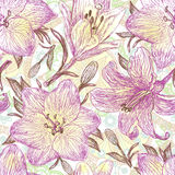 Beautiful hand drawn pattern with lilies. Beautiful hand drawn pattern with blooming lilies Royalty Free Stock Photo