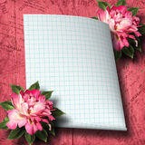Beautiful hand drawn rose branch and sheet of paper Stock Image