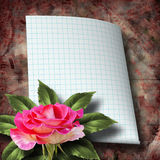 Beautiful hand drawn rose branch and sheet of paper Stock Photos
