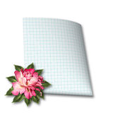Beautiful hand drawn rose branch and sheet of paper Stock Photo