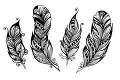Beautiful hand drawn sketch of feathers for your design. Vector illustration Royalty Free Stock Images