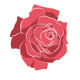 Beautiful hand drawn stencil rose, isolated on white background. Botanical silhouette of flower Royalty Free Stock Photos