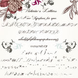 Beautiful hand made script typeface or font in vintage Victorian Stock Photos