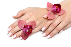 Beautiful hand with nail manicure and orchid Stock Images