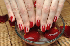 Beautiful hand with nail red manicure and petals Royalty Free Stock Photos
