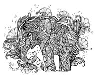 Beautiful hand-painted elephant with floral ornament Stock Images