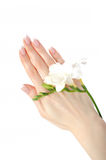 Beautiful hand with perfect french manicure Stock Image