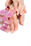 Beautiful hand with perfect nail french manicure Stock Image