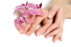 Beautiful hand with perfect nail french manicure Royalty Free Stock Photo