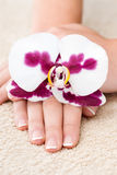 Beautiful hand with perfect nail french manicure and orchid Royalty Free Stock Image
