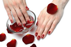 Beautiful hand with perfect nail red manicure Stock Photography