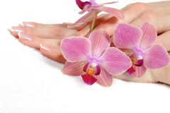 Beautiful hand with spa nail french manicure Royalty Free Stock Images