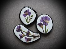 Handmade brooch using dry violet flowers Royalty Free Stock Photography