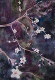 Beautiful  handpainted watercolor blooming apricot tree brunch Stock Image