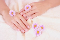 Beautiful hands Stock Photography