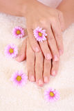 Beautiful hands Royalty Free Stock Photos