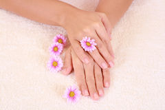 Beautiful hands Royalty Free Stock Photo