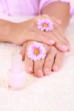 Beautiful hands Stock Images