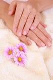 Beautiful hands Stock Photos