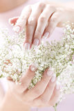 Beautiful hands Royalty Free Stock Images