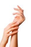 Beautiful hands Stock Image