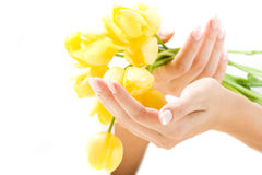 Beautiful hands with bunch of tulips Stock Photos