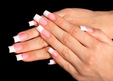 Beautiful hands with french manicure Stock Images
