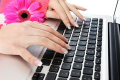 Beautiful hands with a manicure at the keyboard. Royalty Free Stock Photo